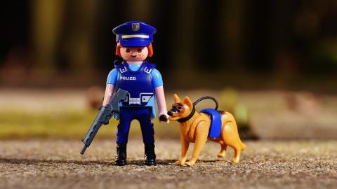 Полиция закупит корм для собак на 10 миллионов из федерального бюджета