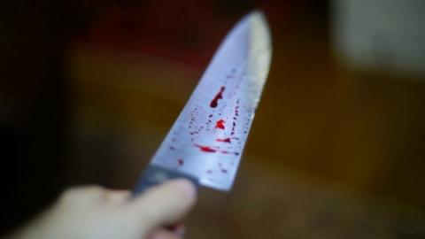 Жительница Калининска сядет за убийство