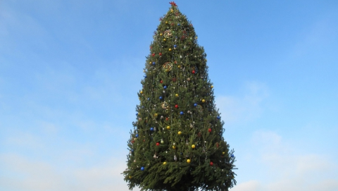 Саратов входит в список городов с самыми высокими новогодними елками