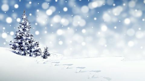 Снег должен выпасть к вечеру