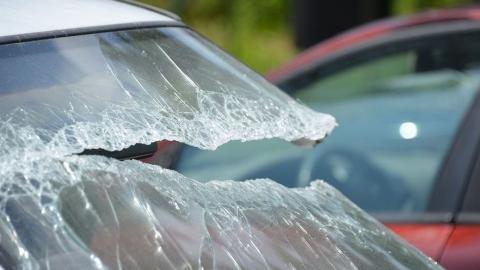 Бездомная дама призналась в краже из авто
