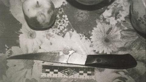 Житель Новоузенского района зарезал жену за дерзость и пьянство