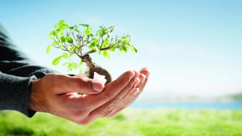 В 2020 году на охрану окружающей среды потратят почти 14 миллиардов 700 миллионов рублей