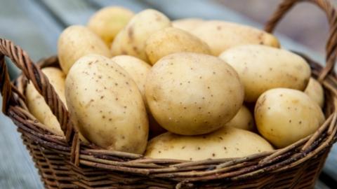 Саратовец задержан за кражу двухсот килограмм картофеля