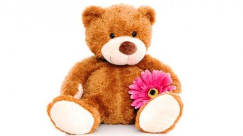 В Саратове рецидивист украл из магазина цветочек и двух медвежат