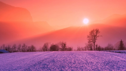 Урожаю угрожает слишком теплая зима