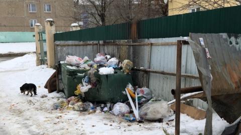 Вольская мусорка возмутила жителей