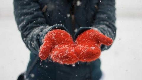 Саратовскую область ждет порывистый ветер и мокрый снег