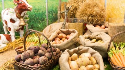 Саратовские овощи подорожали