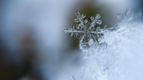 Сегодня холодно и идет снег
