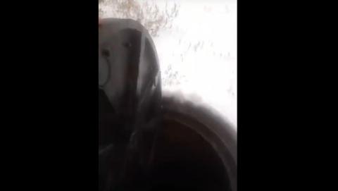 Жителей Энгельса затопило экскрементами | Видео 16+