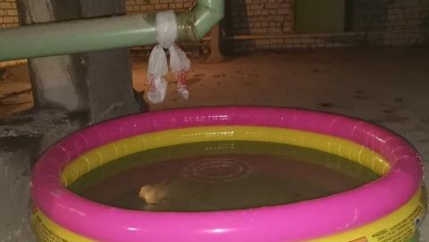 Управляющая компания решила проблему с текущей трубой при помощи надувного бассейна