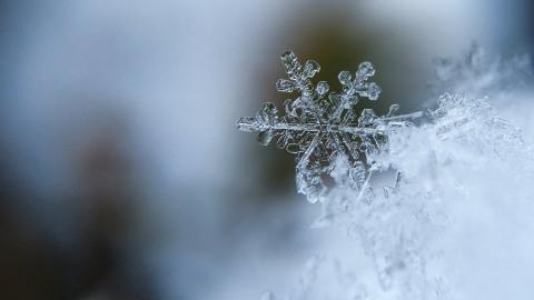 Морозы подходят к концу