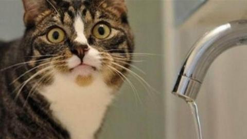 Завтра в Ленинском районе отключат воду