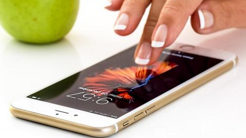 Юные воровки выкинули восьмой iPhone