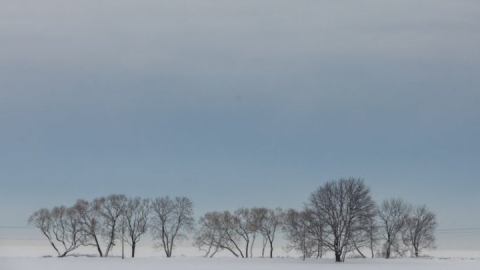 На праздники жителей Саратовской области ждет неустойчивая погода