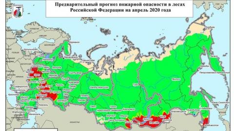 Саратовская область попала в зону риска по лесным пожарам