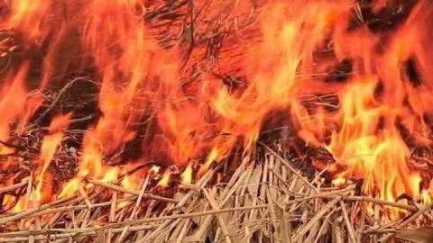 В Самойловке подожгли 2,5 тонны сена