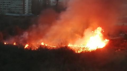 Саратовцы замучали пожарных сообщениями о горящем тростнике