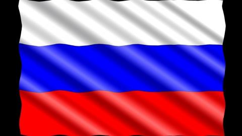 Совет Федерации одобрил 390 поправок в Конституцию