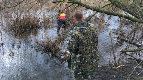 Найдено тело пропавшего в ноябре Артура Шмыглева