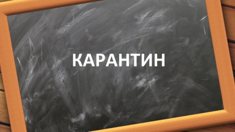 Все учебные заведения области перешли на дистанционную форму обучения