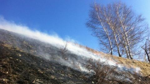 Три костра привели к пожару на Кумысной поляне