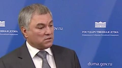 Вячеслав Володин: Нарушителям карантина грозят миллионные штрафы и до семи лет в тюрьме