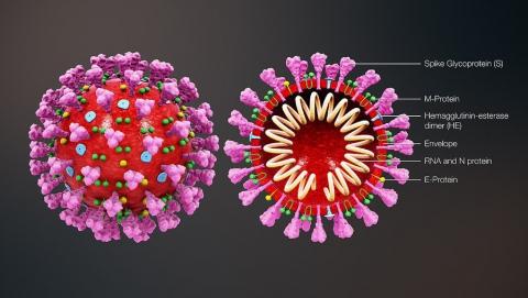 Статистика по коронавирусу в России ухудшается