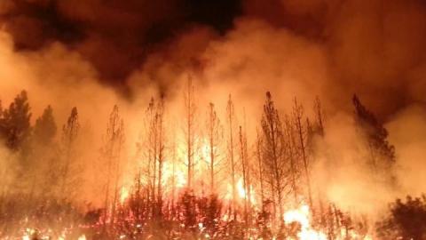 На Саратовскую область надвигается угроза пожаров