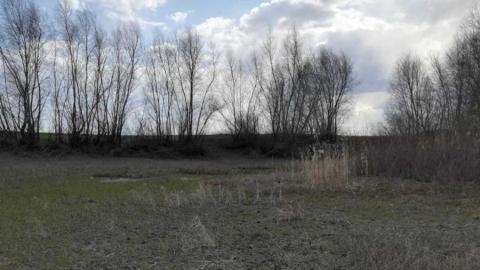 Охотник шел в Советское и нашел человеческие останки