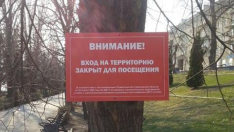 С деревьев на набережной Космонавтов сняли таблички на саморезах