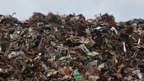 Регоператор усиливает контроль за качеством работы мусоровывозящих компаний