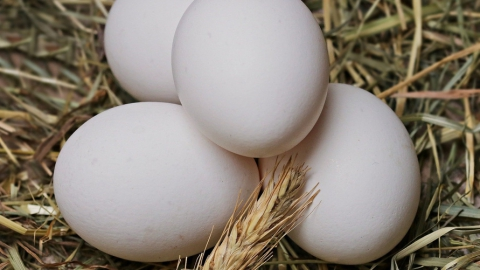 В Саратовской области подорожало почти 70% продуктов питания