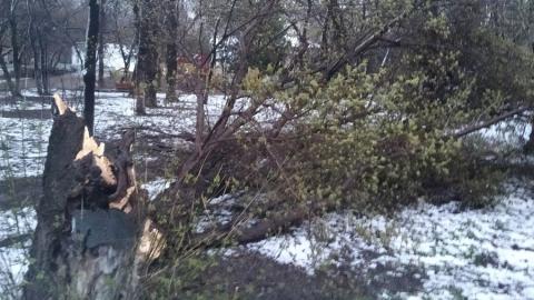 МЧС вновь предупреждает об урагане