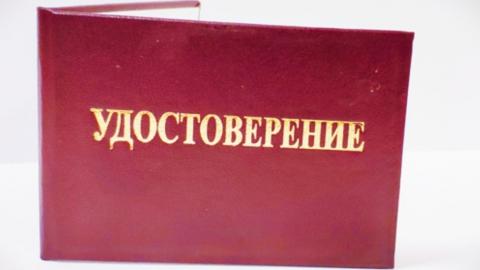 В Саратове оформили более 165 тысяч пропусков