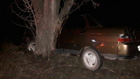 Карамельная «десятка» ночью «встретилась» с деревом