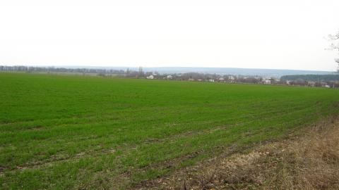 Нестабильная погода оставила Саратовскую область без посевов