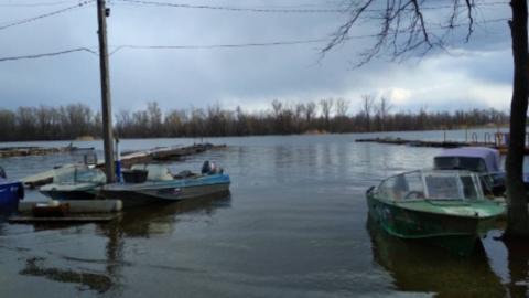 Рыбак сутки просидел на дереве посреди Волги и утонул, пытаясь доплыть до берега