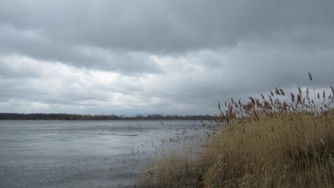 Тёплые грозы пройдут по Саратовской области