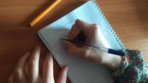 Рособрнадзор: резервные дни итоговых сочинения и собеседования могут быть перенесены