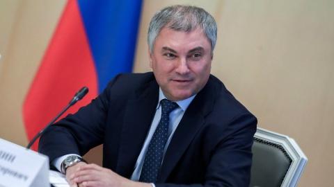 Володин пообещал ускорить работу над законопроектом о кибермошенничестве