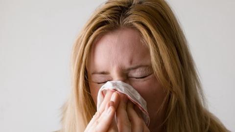 Саратовцам объяснили отличие коронавируса от сезонной аллергии