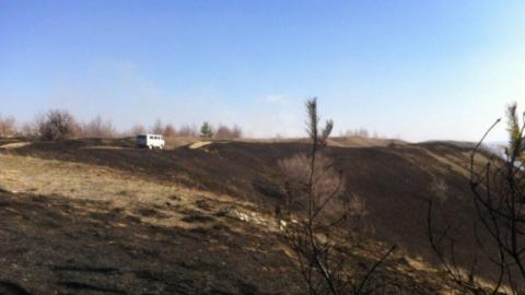 В Саратовской области начала гореть сухая трава