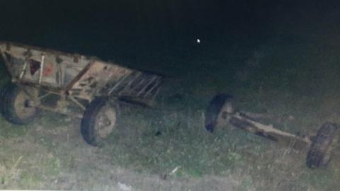 Престарелый водитель повозки погиб в ДТП