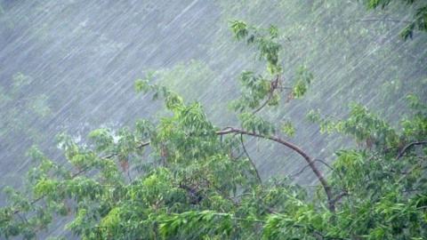 «Коронавирусные» районы Саратовской области поразила гроза и сильный ветер