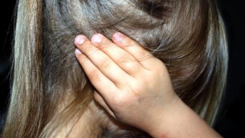 Совратитель пятилетней девочки отправится в колонию на 12,5 лет