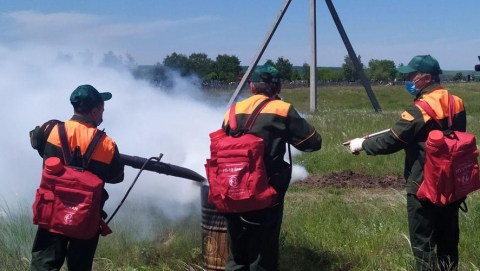 Лесничие тренировались тушить огонь в Лысогорском районе | Видео