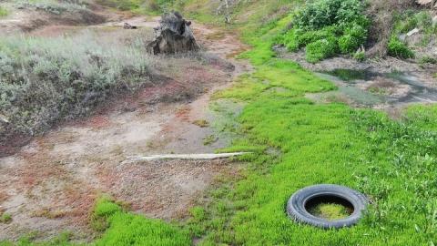 Предприятие оштрафуют на 9,5 миллионов за загрязнение реки