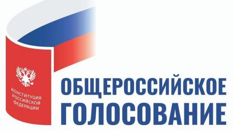 Более 14 тысяч представителей общественных организаций будут наблюдать за ходом общероссийского голосования